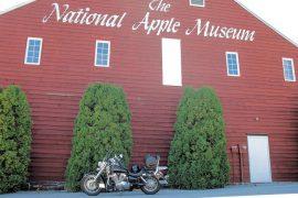 museo mela