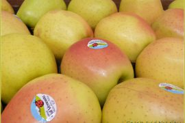 mela rossa datazione Kundli match rendendo libero in Hindi